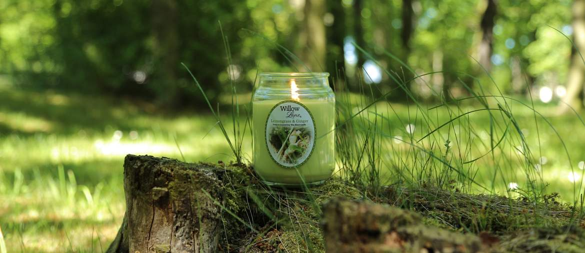 Kolekcja Willow Lane od Candle-lite